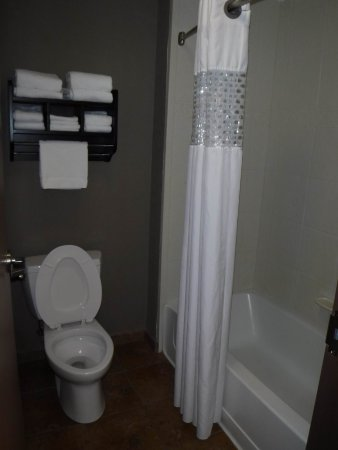 Flowery Branch, GA: Bathroom