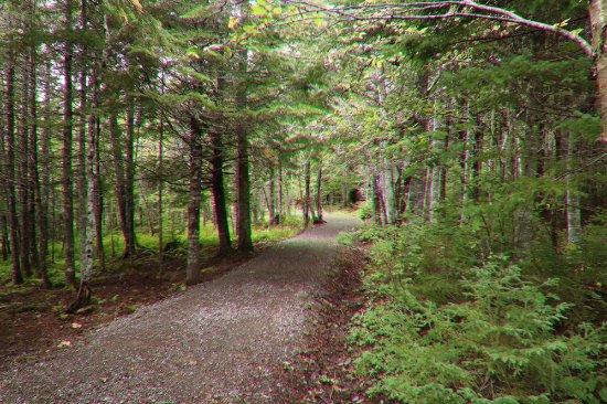 Boularderie, Kanada: Nice trail