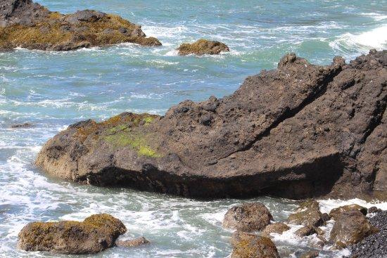 Oregon Coast, Oregón: Yaquina Lighthouse area