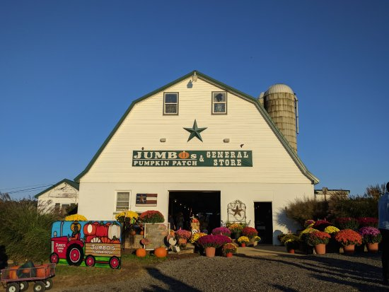 Middletown, MD: farm store