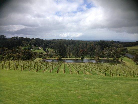 Red Hill, Australia: photo0.jpg