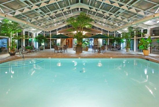 Okemos, Μίσιγκαν: Swimming Pool