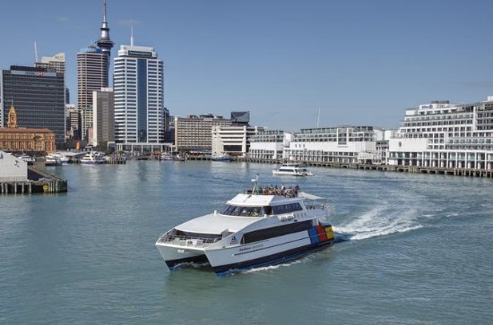 Auckland Harbor Sightseeing Cruise