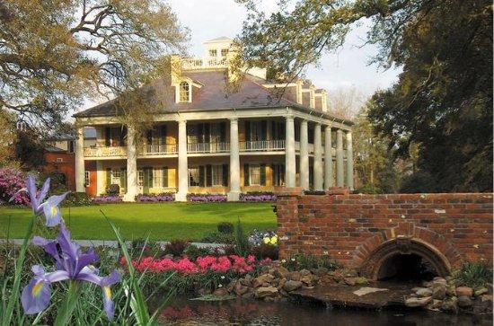 Excursion à la plantation Houmas House
