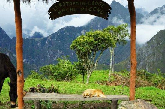 Inca Jungle 4-Day Trek from Cusco to Machu Picchu