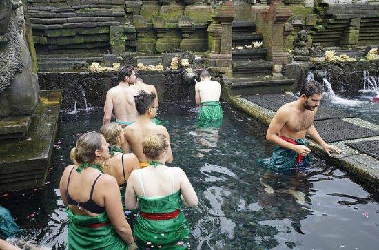 バリ寺院とライステラスツアー