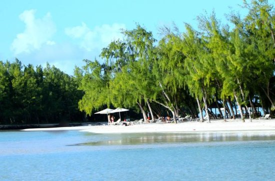 Private Trip to Ile Aux Cerfs Island and GRSE Waterfall and Coral...
