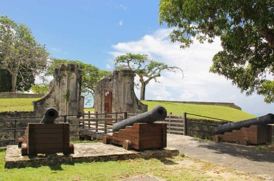 Sightseeing Tour: Visit a Fort and...