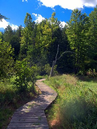 Lanark, Kanada: Another boardwalk
