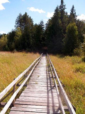 Lanark, Kanada: The boardwalk over the beaver meadow