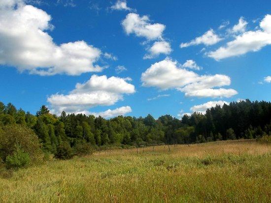 Lanark, Kanada: The view of the beaver meadow