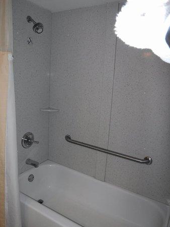 College Park, Geórgia: Shower & Bathtub