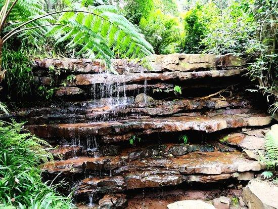Kloof, Южная Африка: IMG_20171021_101024_large.jpg