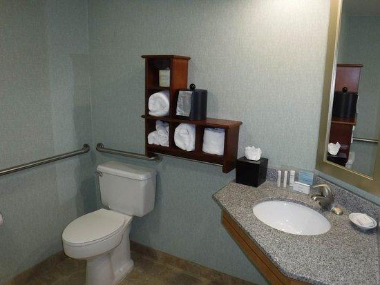 Hampton Inn Daytona Speedway / Airport: Nice clean bathroom