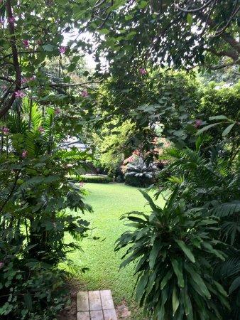 วังสวนผักกาด: The gardens