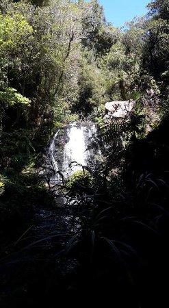 Te Puke, Yeni Zelanda: photo0.jpg