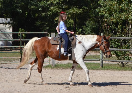 Wampee Stables: Gracie loves to ride! Remington is a great horse!