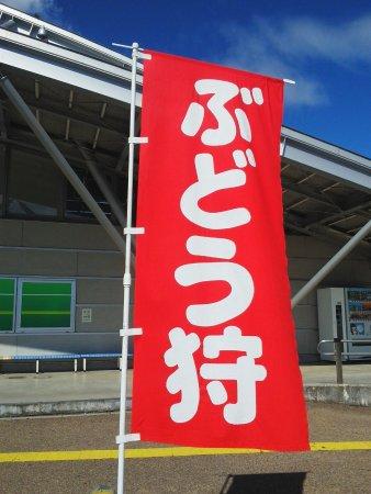 Nanyo Photo