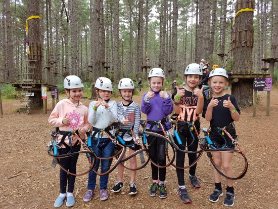 Tree Adventures: Perfect Party Fun!!!