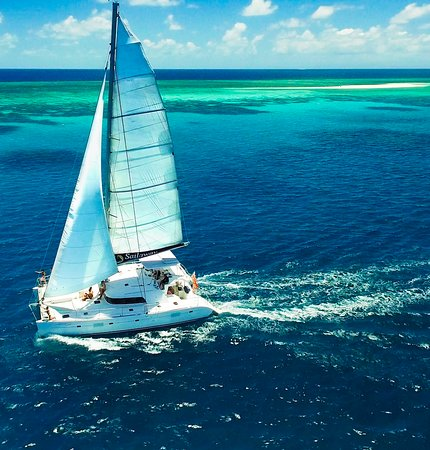 Cape Tribulation, Australië: Sailaway IV to Mackay Coral Cay