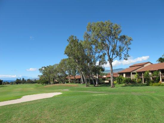 Waikoloa Village Golf Club: Waikoloa Village GC: H10