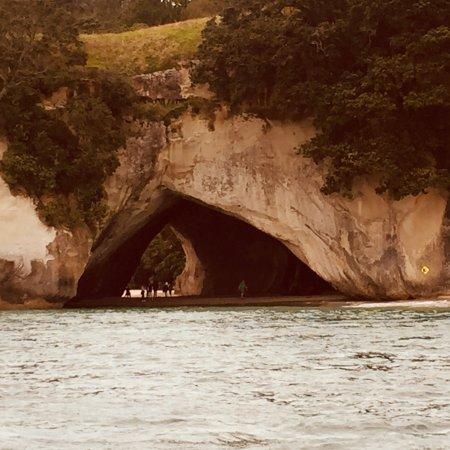 Whitianga, New Zealand: photo1.jpg