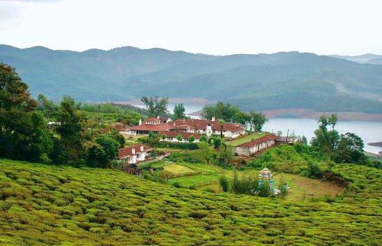 Red Hill Nature Resort: photo0.jpg