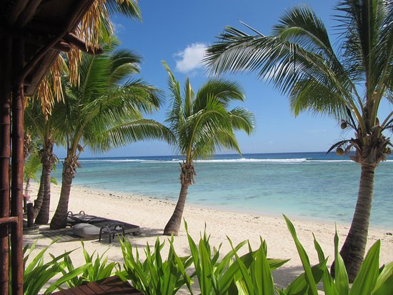 Magic Reef Bungalows: view from your room ( Bungalow #1)