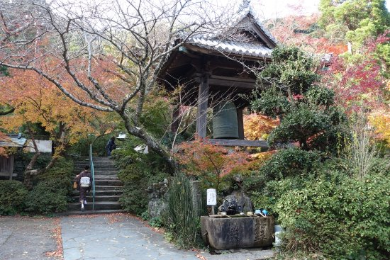 Tokushima صورة فوتوغرافية