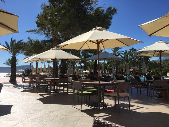Club Med Palmiye: Bar