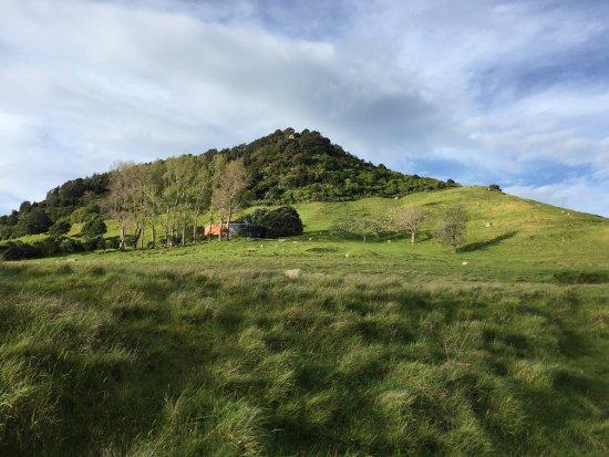 Mount Maunganui, New Zealand: Evening walk round the Mount