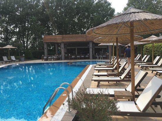 Chalkidona, Grecia: Chambre et jacuzzi, piscine, salon intérieur , et dîner au restaurant. Accueil et gentille 5 éto
