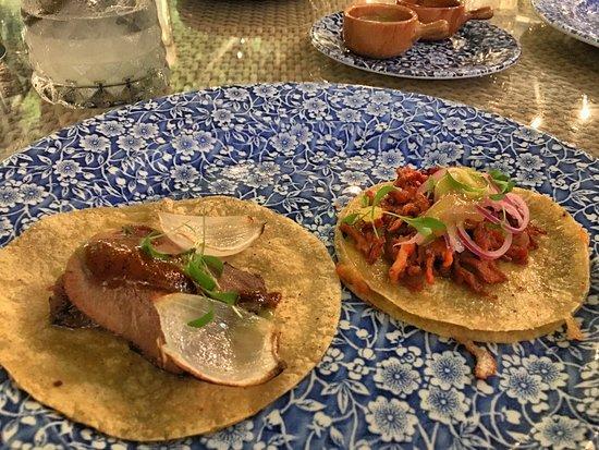 Mexican Restaurant Near Victoria Station