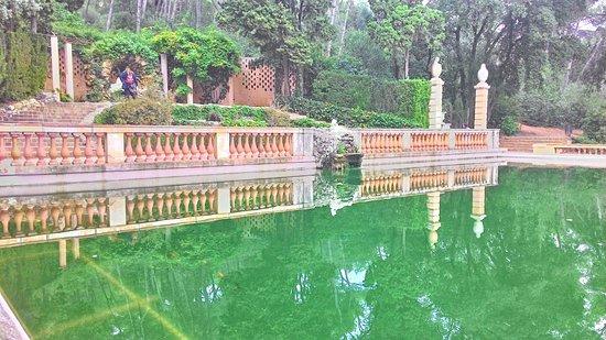 Parque del Laberinto de Horta: бассейн с рыбками