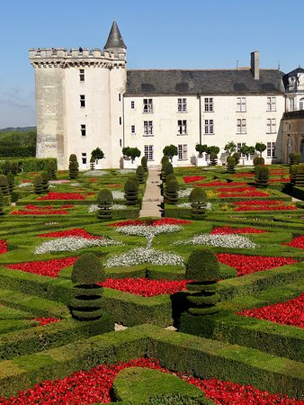 Villandry, Fransa: I professional photographers get better shots but this is perfect for me