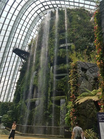 Gardens by the Bay: cloud forest
