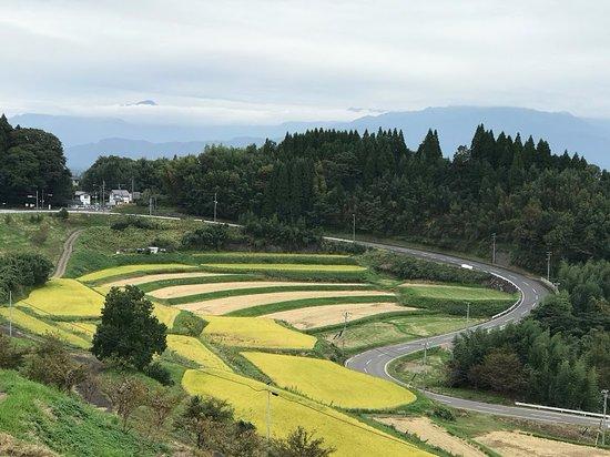Michi-no-Eki Takeda: 道の駅の周辺は、収穫真っ盛りの黄金の稲の棚田