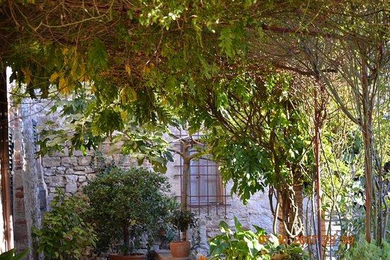 Castello di Fonterutoli Foto