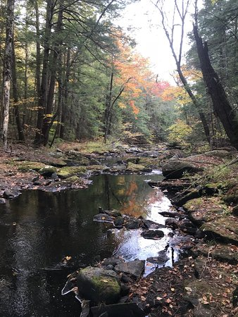 Swift River Reservation