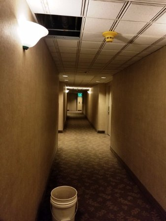 Wenatchee, WA: Leaking ceiling--however, it is an old building and everything worked just fine!!