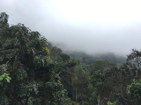 Misty Mountain Resort - Kuttikkanam