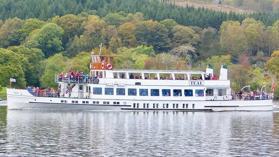Bowness-on-Windermere, UK: Swan 2