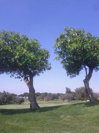 Gualta, Hiszpania: image-dd52bcceebfba138c36bc3f468bc1a0f8bc1d9aee179b559fe4ebd7af51ed9da-V_large.jpg