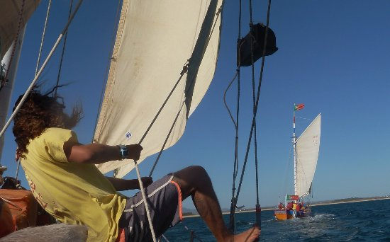 Trigana Boat Trips: Don't let the crew fool you, The fun race back under sail seemed a bit more serious than that!
