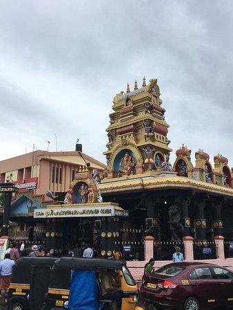 Hotels In Trivandrum Near Padmanabhaswamy Temple
