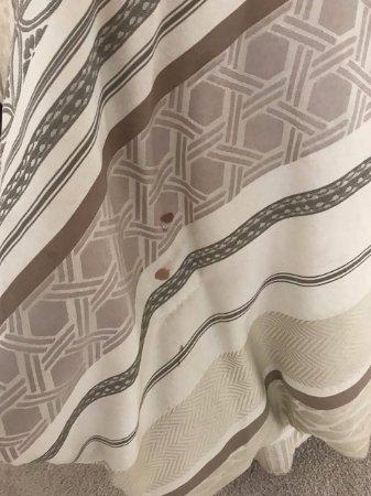 comforter in master bedroom