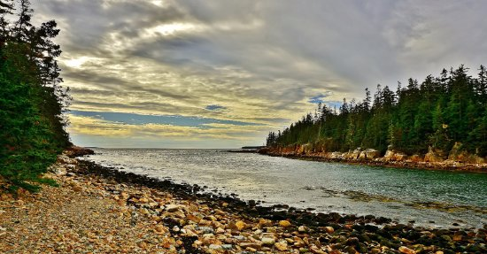 Bass Harbor, ME: Look toward the mouth of Ship Harbor cove from trail