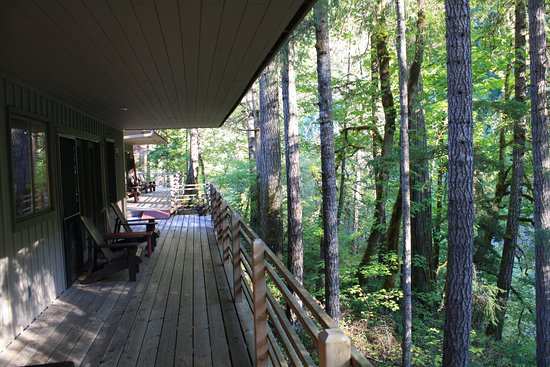 Idleyld Park, OR: The deck outside of our room