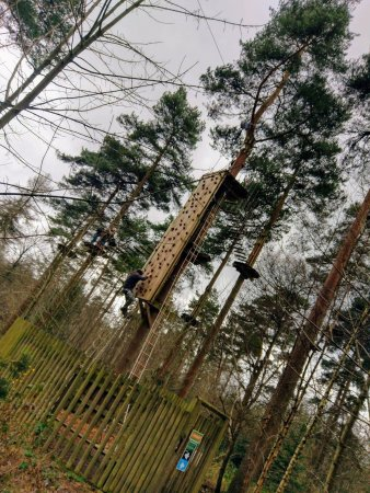 Go Ape Wendover: The climbing wall.