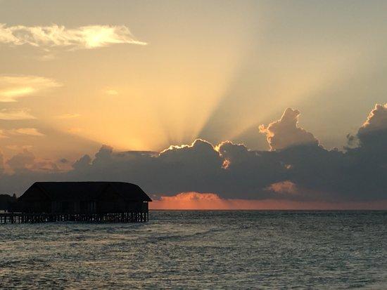 Cocoa Island by COMO: photo5.jpg